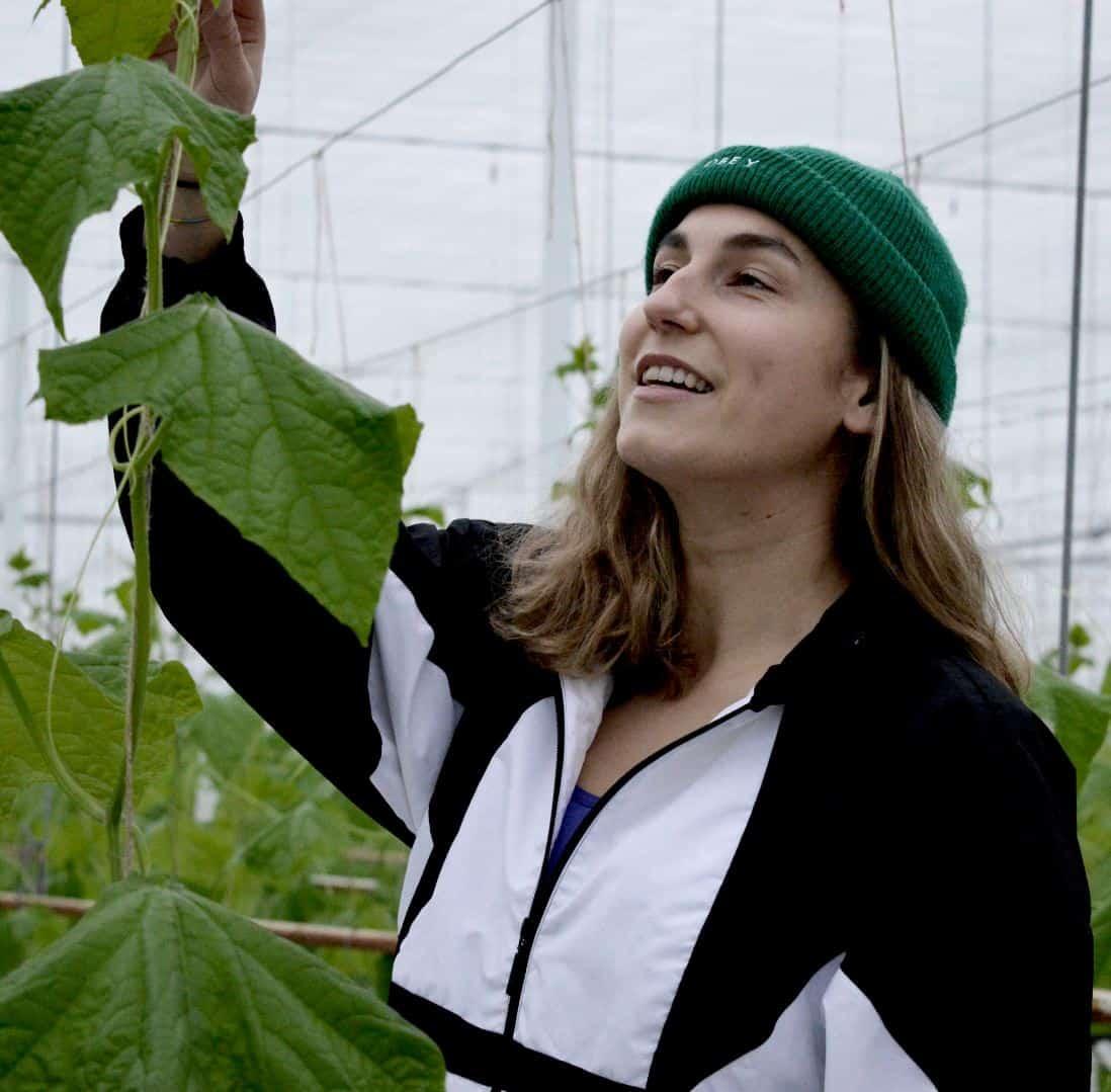 mbo - student - sector groen - loopbaan - loopbaanbegeleiding - de volgende stap in mijn loopbaan